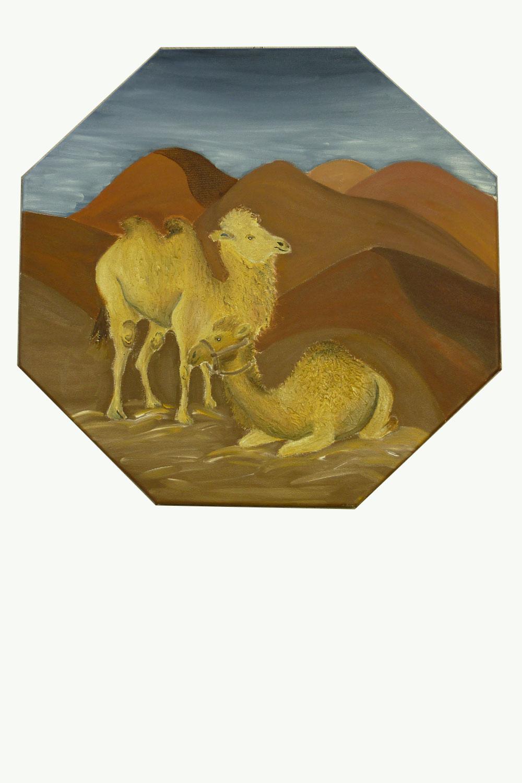 Kamele Malgruppen
