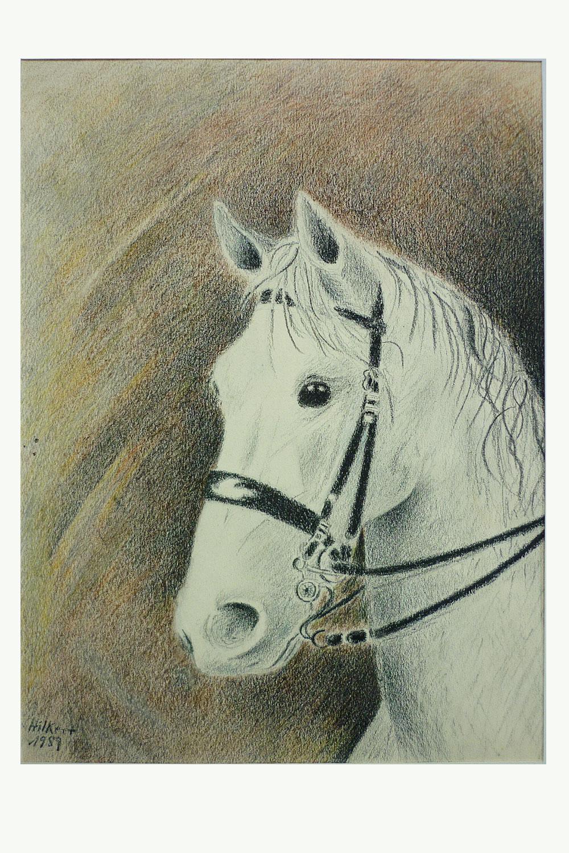 Pferd Verkauf