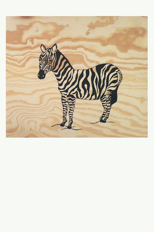 Zebra Malgruppen